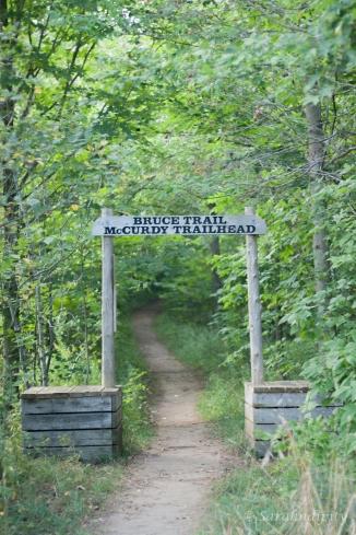 Bruce Trail McCurdy TrailheadWM