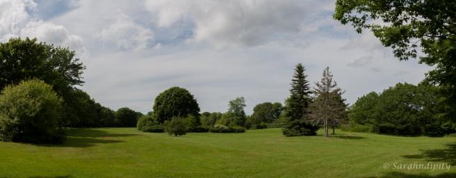 Peter's Field PanoWM